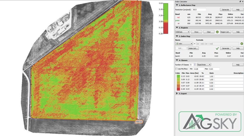 UAV / Drone Data Processing NDVI NIR Wild Oats